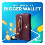 Setel: Now with a Bigger Wallet